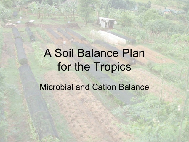 A Soil Balance Plan   for the TropicsMicrobial and Cation Balance