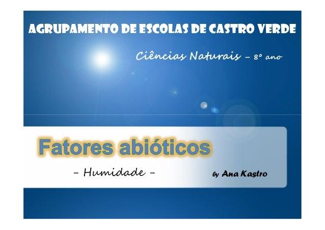 AGRUPAMENTO DE ESCOLAS DE CASTRO VERDE Ciências Naturais  - Humidade -  by  – 8º ano  Ana Kastro