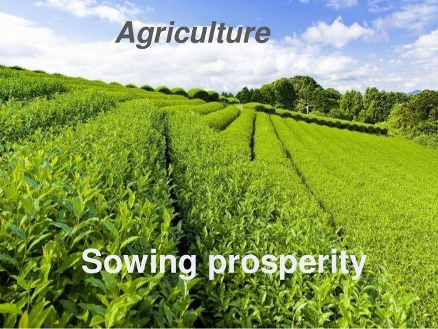 Agriculture Sowing prosperity