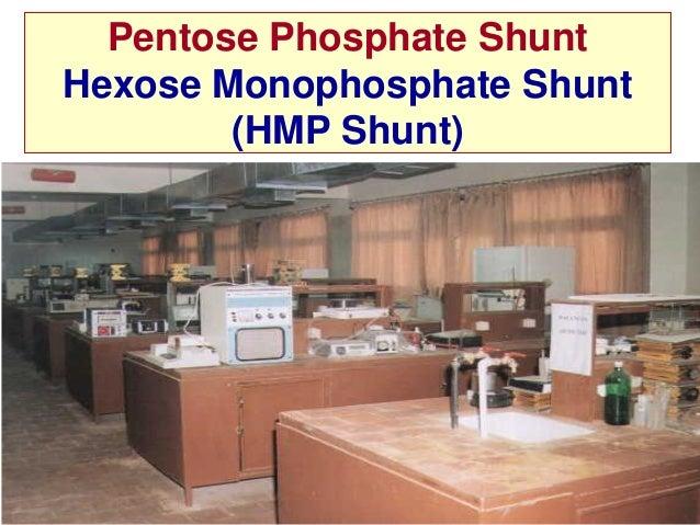 Pentose Phosphate ShuntHexose Monophosphate Shunt        (HMP Shunt)