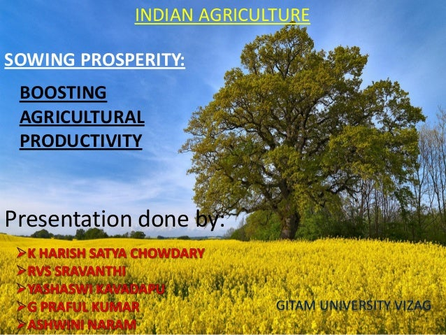 BOOSTING AGRICULTURAL PRODUCTIVITY SOWING PROSPERITY: Presentation done by: GITAM UNIVERSITY VIZAG INDIAN AGRICULTURE