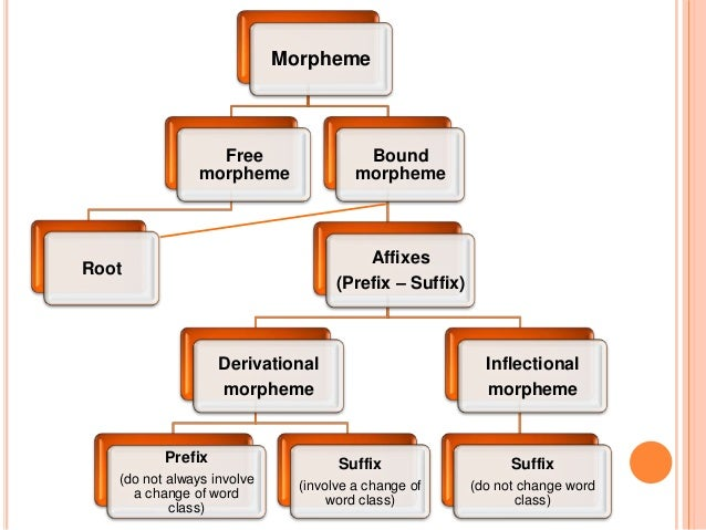 different types of morphemes Morphemes are the smallest units of sound or combination of sounds that make up words in speech and have meaning there are many different types of morphemes.
