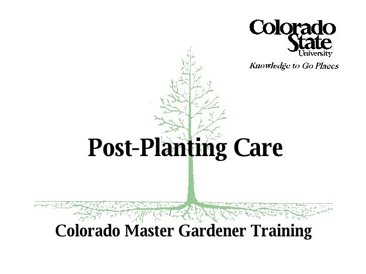 Colorado Master Gardener Training Post-Planting Care
