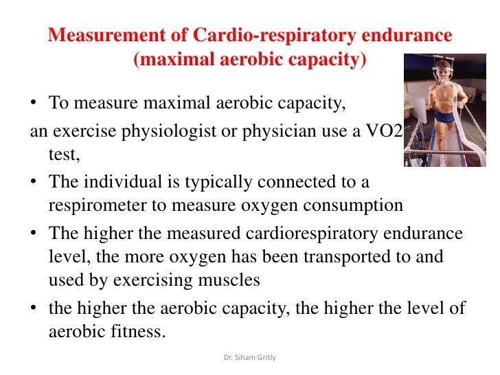 exercise physiology and cardiovascular endurance