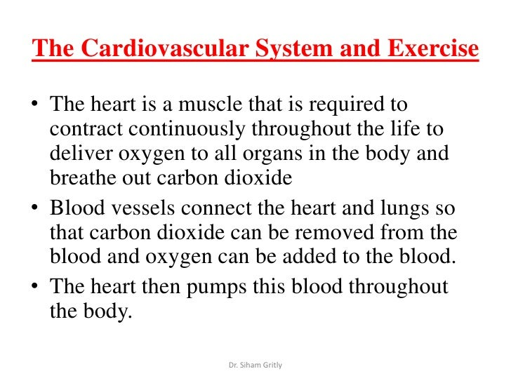 cardiovascular physiology exercise 6 View notes - pex-06-01 from physiology 201 at american university  exercise 6: cardiovascular physiology: activity 1: investigating the refractory  period of.