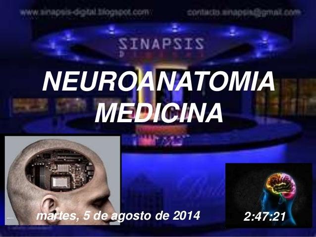 8/5/2014 Dr. Omar Diaz Tablas 1 NEUROANATOMIA MEDICINA martes, 5 de agosto de 2014 2:47:21