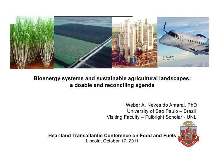 Bioenergy systems and sustainable agricultural landscapes:             a doable and reconciling agenda                    ...