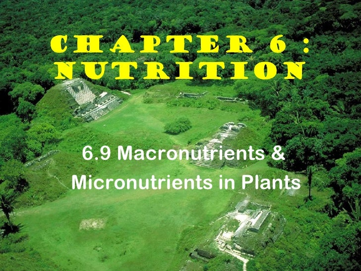 CHAPTER 6 :NUTRITION 6.9 Macronutrients &Micronutrients in Plants