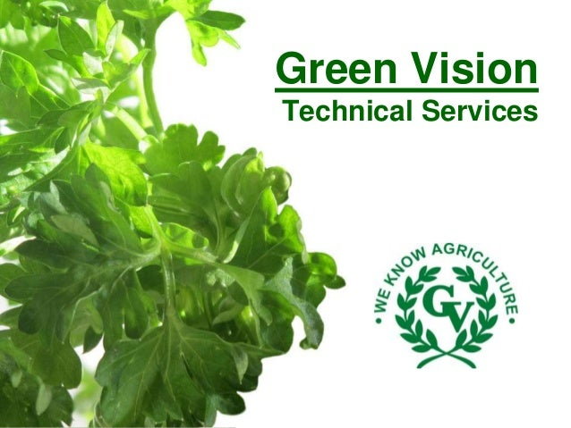 Green VisionTechnical Services