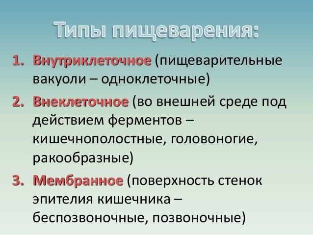 ЭВОЛЮЦИЯ ПИЩЕВАРЕНИЯ