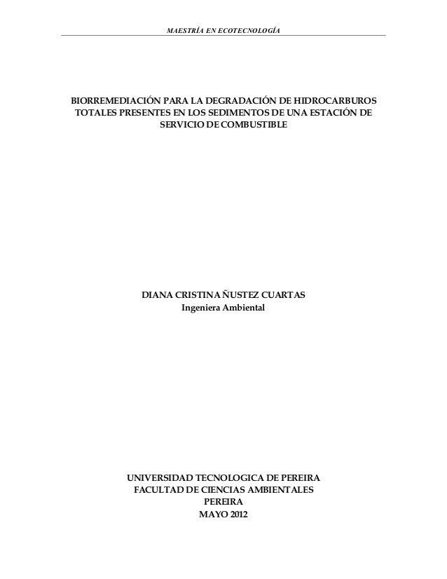Biorremediación: contaminacion por hidrocarburos