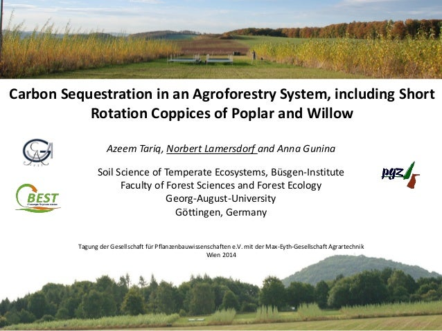 Carbon Sequestration in an Agroforestry System, including Short Rotation Coppices of Poplar and Willow Azeem Tariq, Norber...