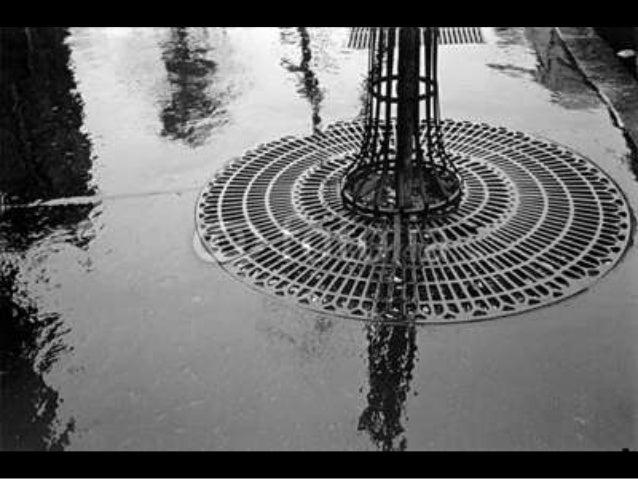 679- Paris in the rain