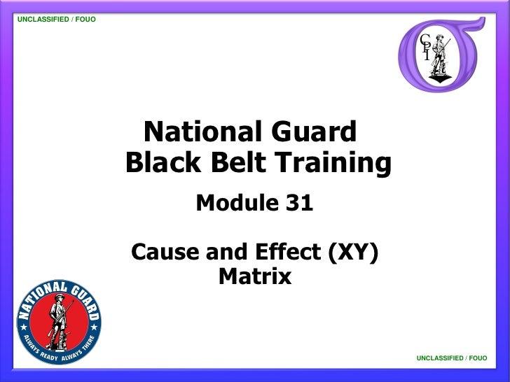 NG BB 31 Cause and Effect (XY) Matrix