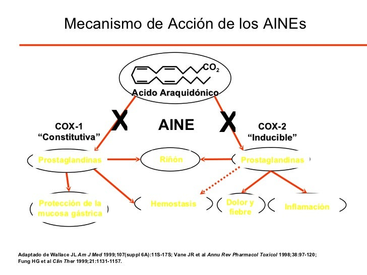 antiinflamatorios no esteroideos aines ppt