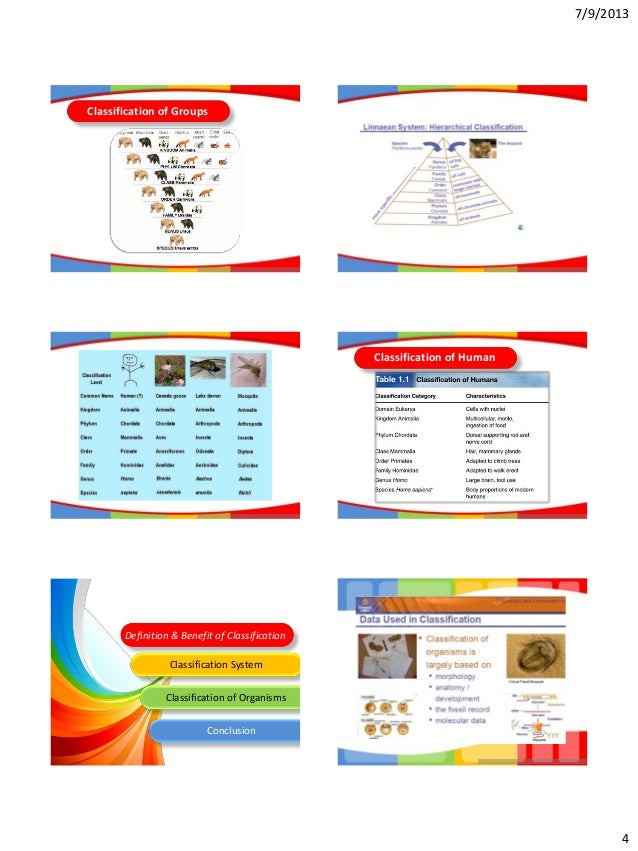 4 Classification of Groups