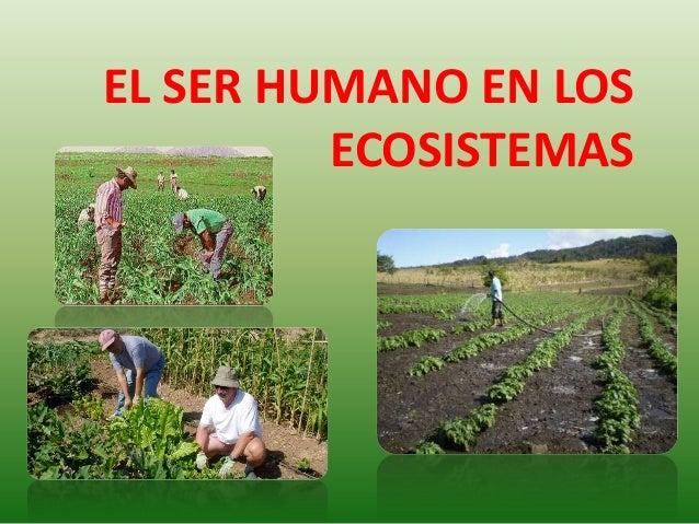EL SER HUMANO EN LOS         ECOSISTEMAS