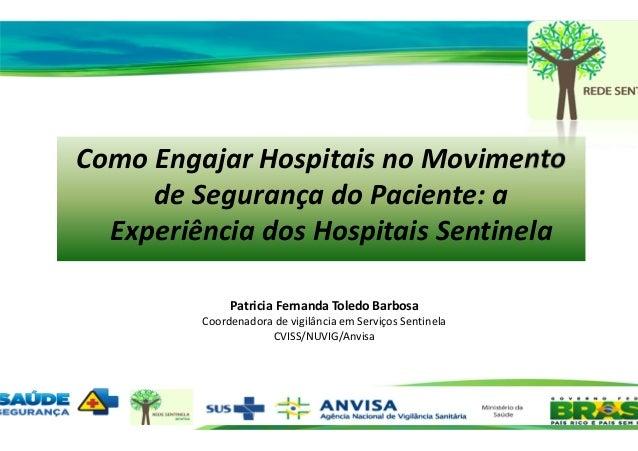12/11/2013 Como Engajar Hospitais no Movimento de Segurança do Paciente: a Experiência dos Hospitais Sentinela Patricia Fe...