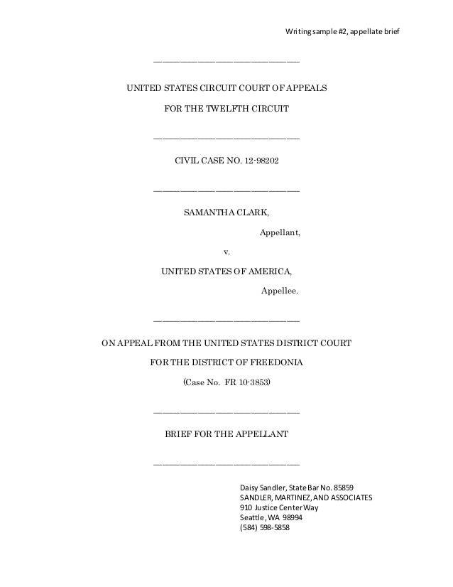 Appeals Court Briefs