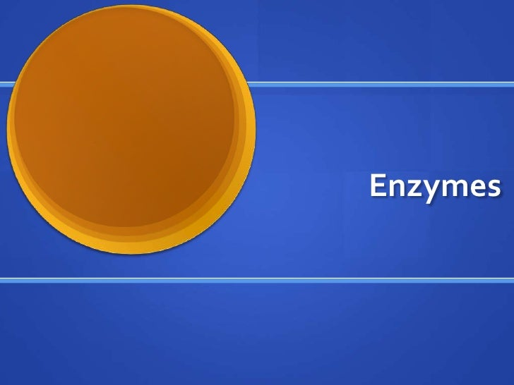 Enzymes<br />