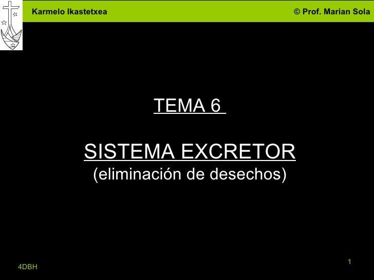 TEMA 6  SISTEMA EXCRETOR (eliminación de desechos) 4DBH