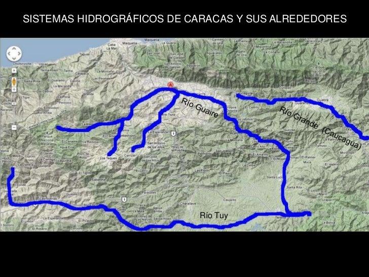 Peces del Valle de Caracas. Francisco Provenzano.