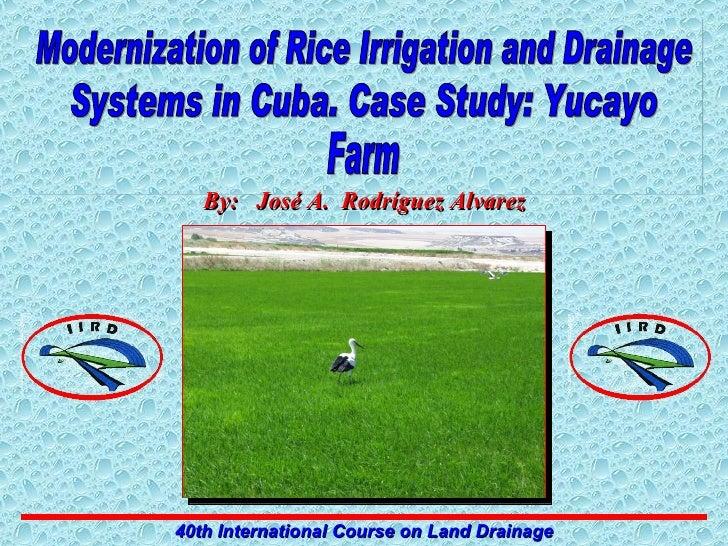 Modernization of Rice Irrigation and Drainage