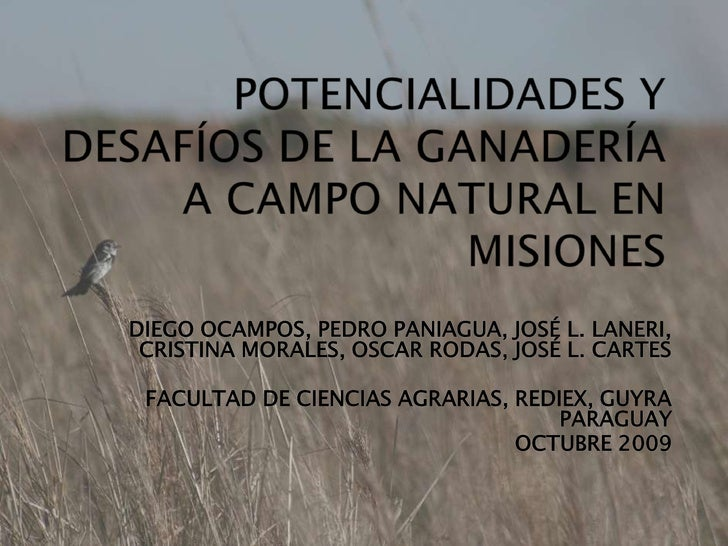 Potencialidades de Campos Misiones Paraguay - Morales