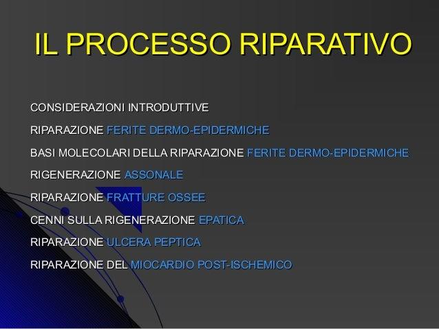 IL PROCESSO RIPARATIVOCONSIDERAZIONI INTRODUTTIVERIPARAZIONE FERITE DERMO-EPIDERMICHEBASI MOLECOLARI DELLA RIPARAZIONE FER...