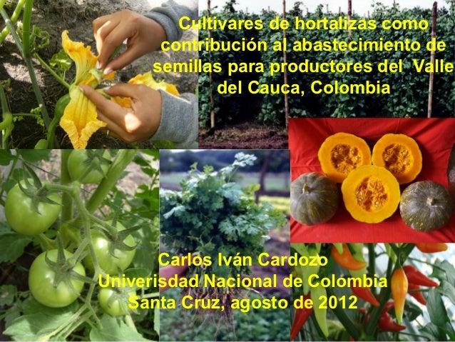 Cultivares de hortalizas como contribución al abastecimiento de semillas para productores del  Valle del Cauca, Colombia, Por Carlos Ivan Cardozo - UNAL