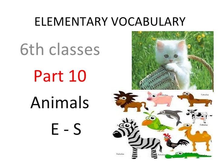Animal Parts Classes Part 10 Animals