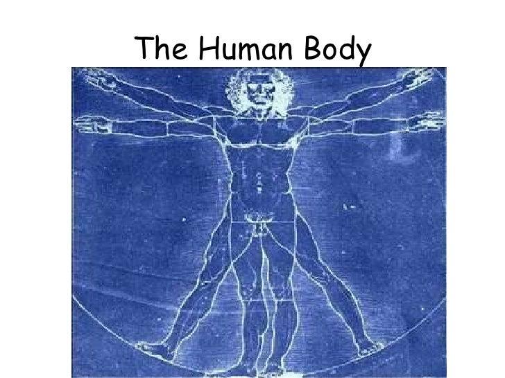 6)The Human Body