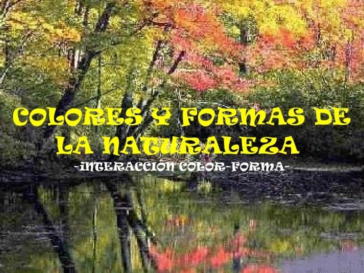 COLORES Y FORMAS DE LA NATURALEZA   -iNTERACCIÓN COLOR-FORMA-