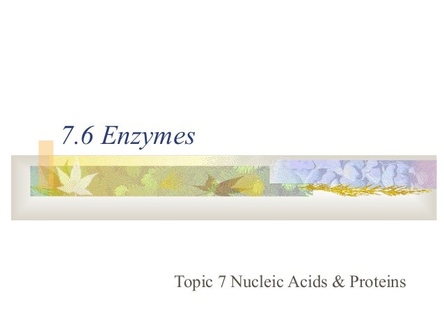 7.6 Enzymes Topic 7 Nucleic Acids & Proteins