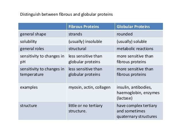 new two examples of globular proteins | example