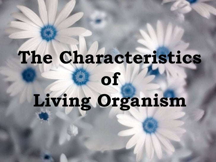 the characteristics of living organism