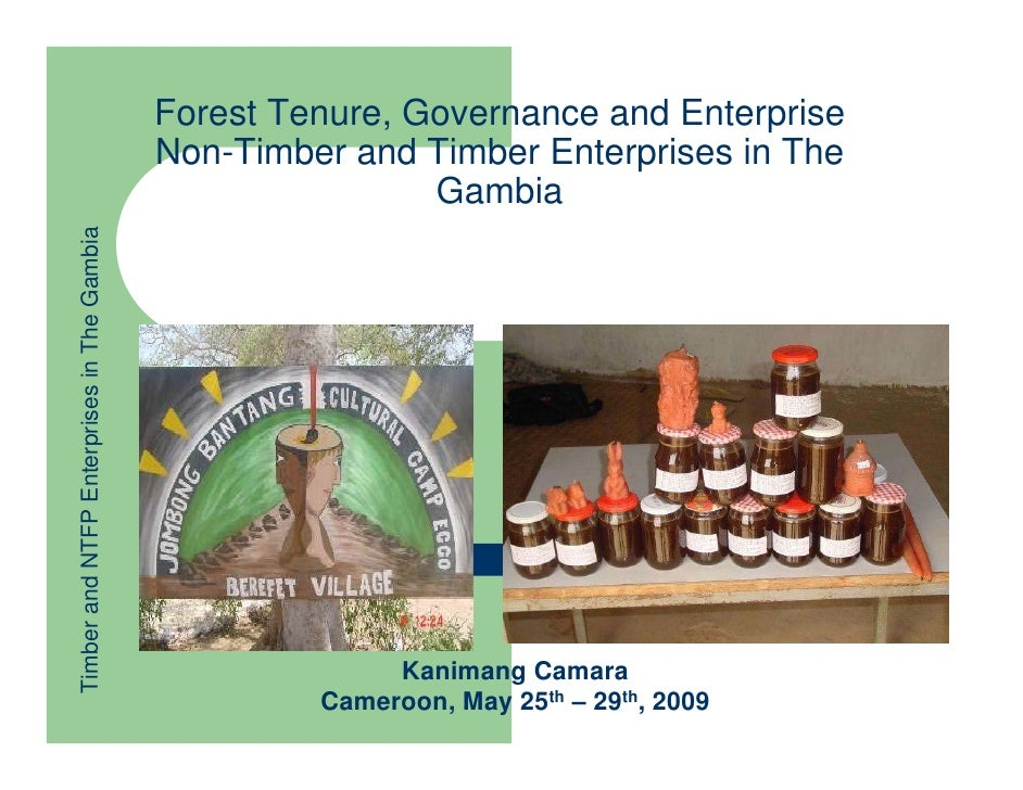 Kanimang Camara: Alternative tenure & enterprise models for pro-poor growth : Non-timber and timber enterprises in the Gambia