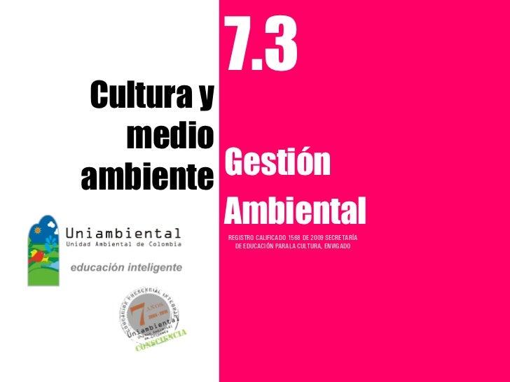 7.3 Cultura y   medioambiente   Gestión           Ambiental          REGISTRO CALIFICADO 1568 DE 2009 SECRETARÍA          ...