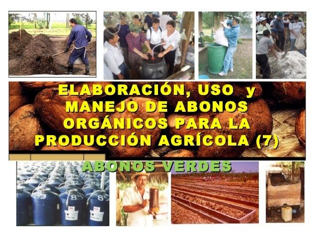 ELABORACIÓN, USO y   MANEJO DE ABONOS  ORGÁNICOS PARA LAPRODUCCIÓN AGRÍCOLA (7)    ABONOS VERDES