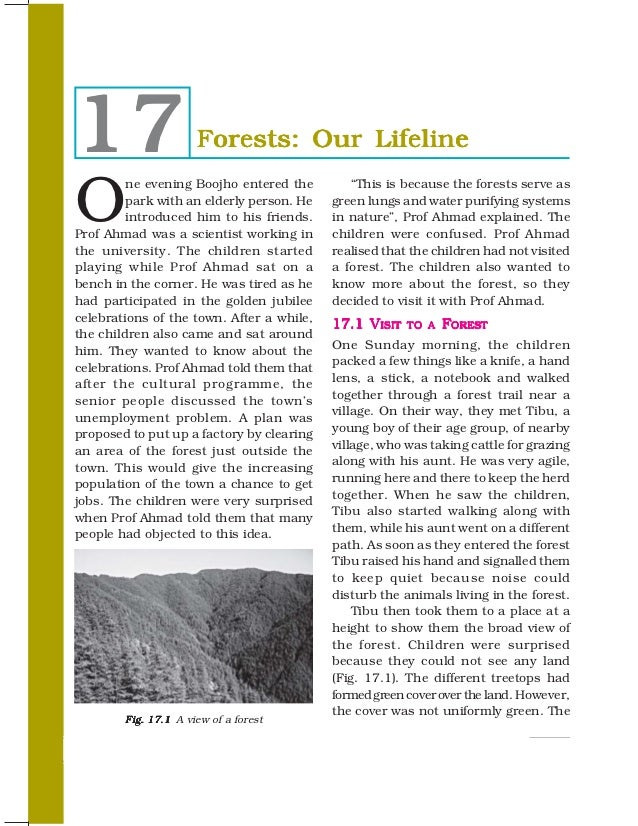 forest our lifeline essay