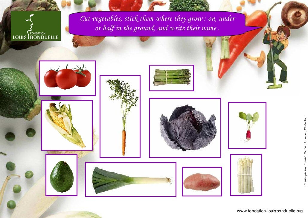 Cut vegetables, stick them where they grow : on, under     or half in the ground, and write their name .                  ...