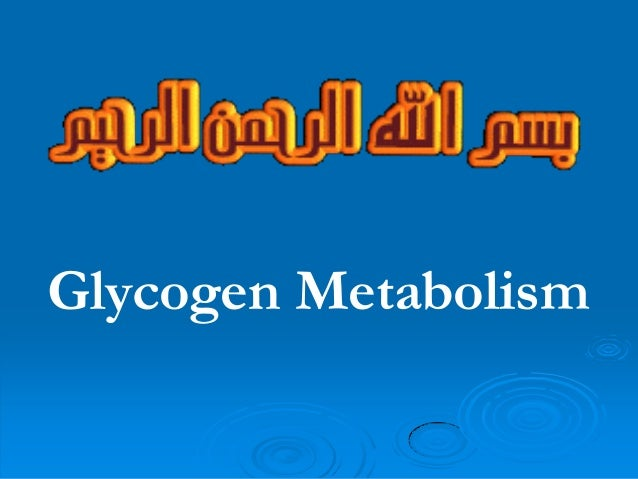 7 glycogen metabolism