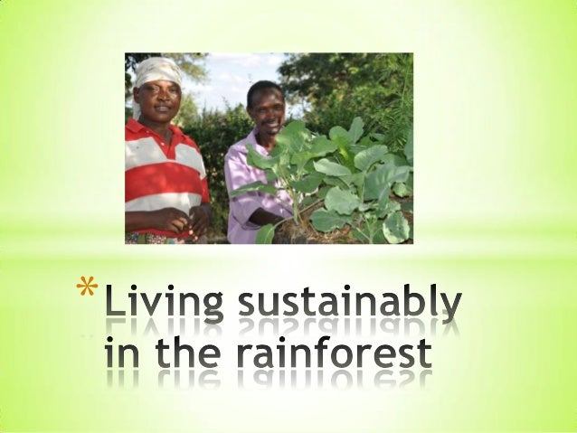 7   living sustainably in the rainforest