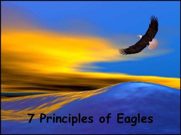7 Principles Of Eagle 1