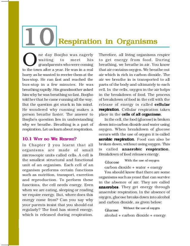 10                    Respiration in OrganismsO          ne day Boojho was eagerly            Therefore, all living organi...
