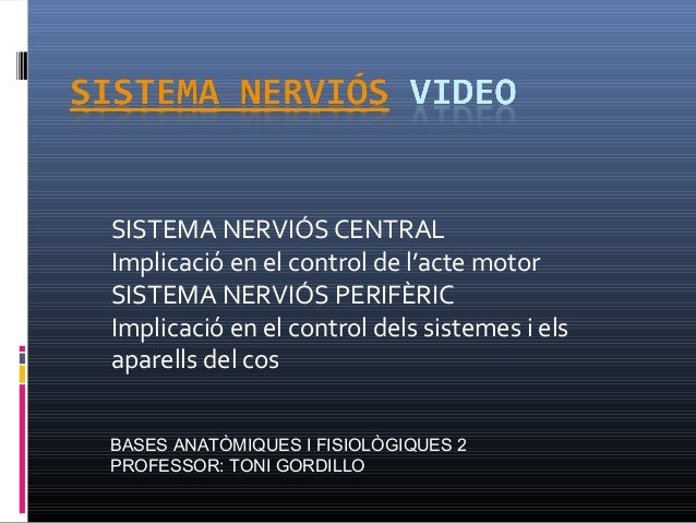 SISTEMA NERVIÓS CENTRAL Implicació en el control de l'acte motor SISTEMA NERVIÓS PERIFÈRIC Implicació en el control dels s...