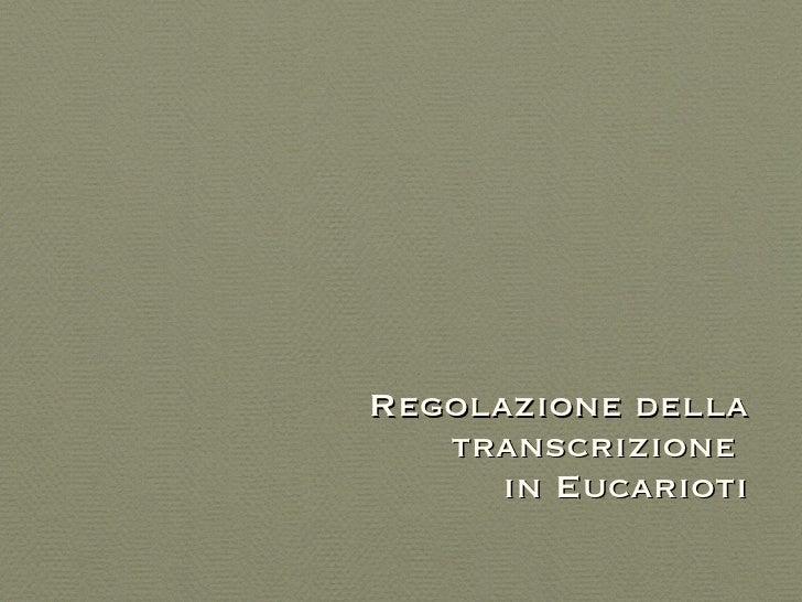 Regolazione della transcrizione  in Eucarioti