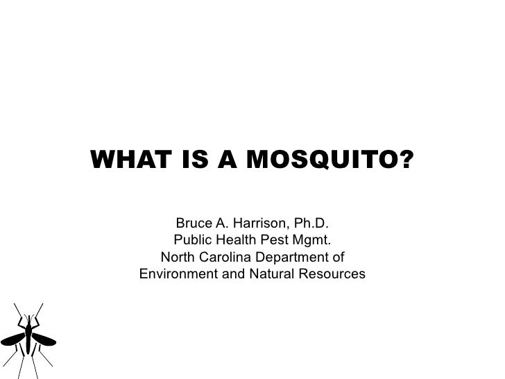 WHAT IS A MOSQUITO? Bruce A. Harrison, Ph.D. Public Health Pest Mgmt. North Carolina Department of Environment and Natural...