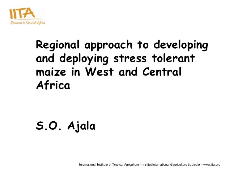 Regional approach to developingand deploying stress tolerantmaize in West and CentralAfricaS.O. Ajala       International ...