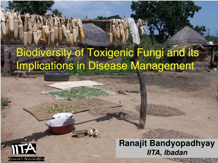 Biodiversity of Toxigenic Fungi and itsImplications in Disease Management                                              Ran...